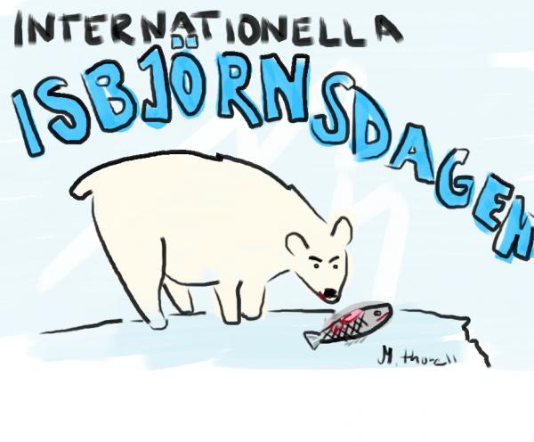 isbjörn2